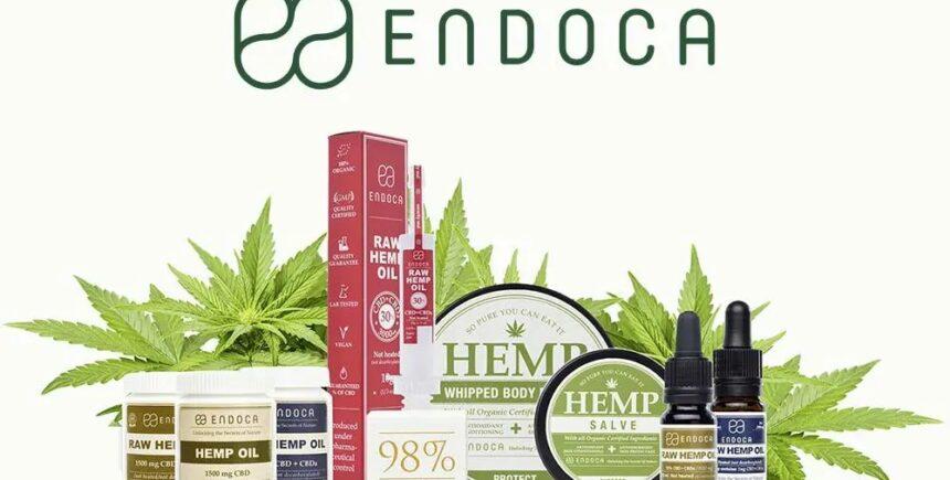 endoca 2 image