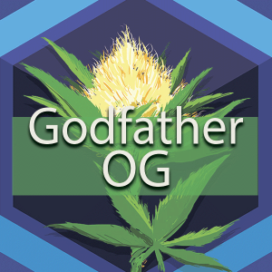 Godfather OG (The Don of All OGs, Godfather), AskGrowers