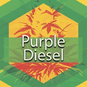 Purple Diesel, AskGrowers