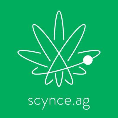Scynce Led Logo