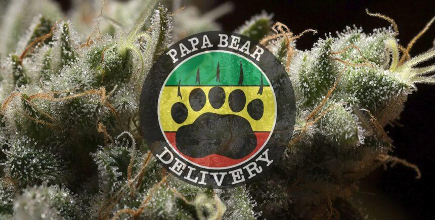 papa bear header