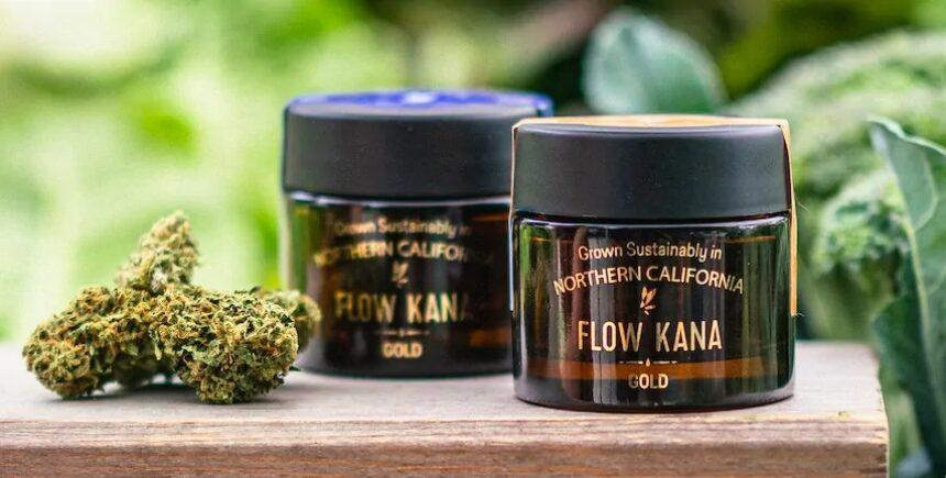 Flow Kana header22
