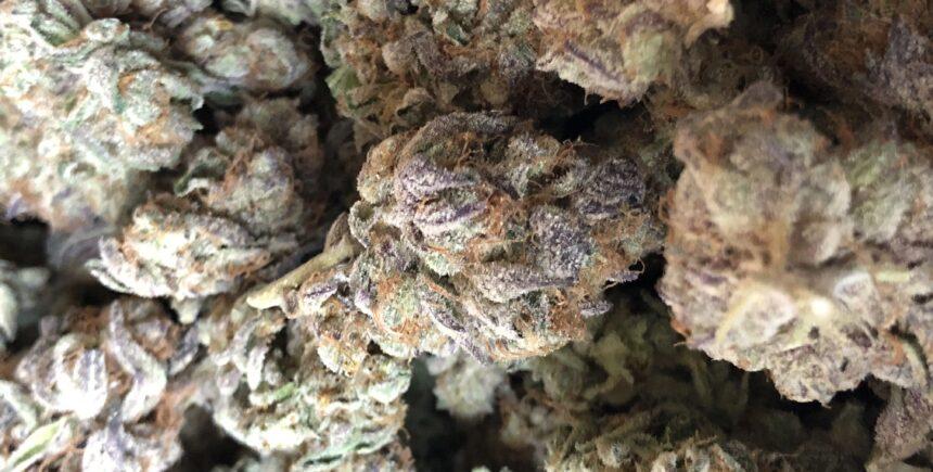 viper cookies 1 image
