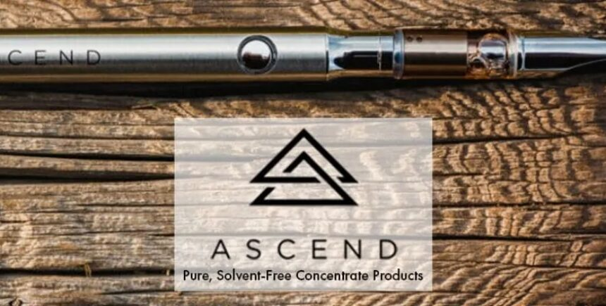 ascend 5 image