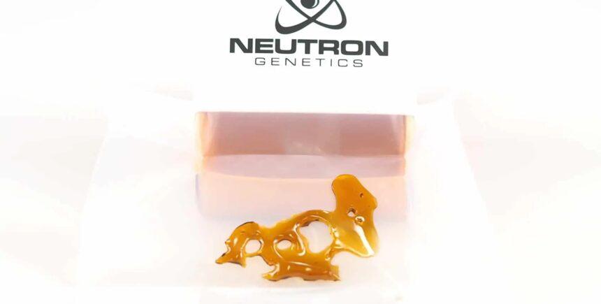 neutron 3 image