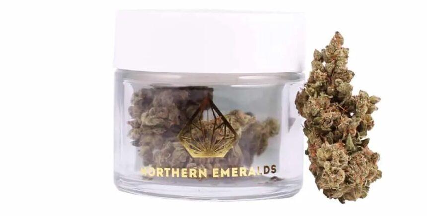 northen emerald 1 image