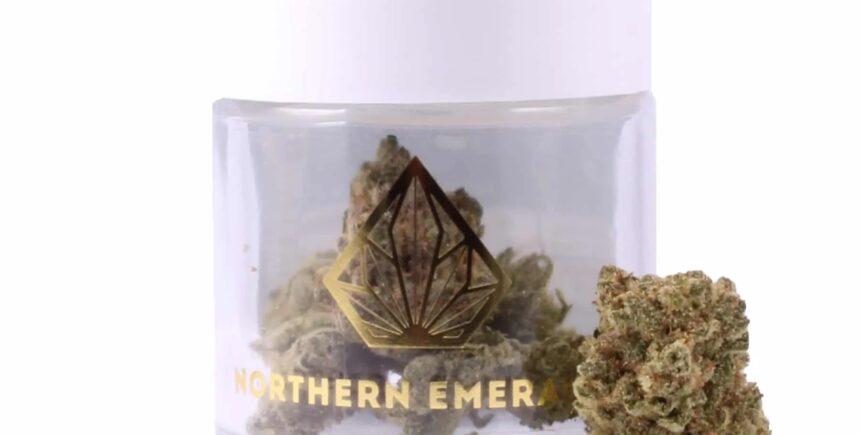 northen emerald 2 imagee