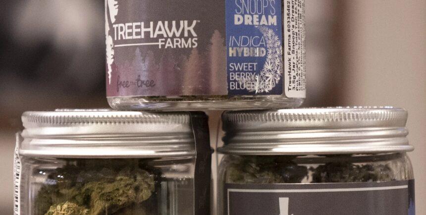 treehawk 4 image