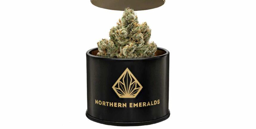 northen emerald 4 image