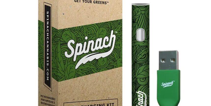 Spinachi 1 image