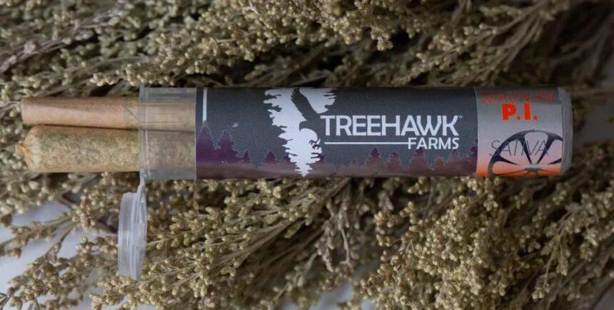 treehawk 6 image