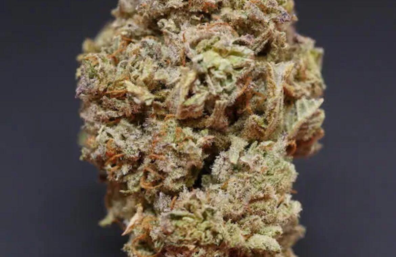 Clementine strain photo 2