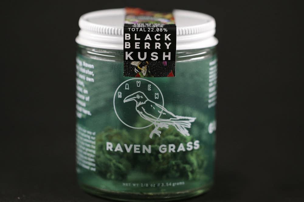raven grass photo 1