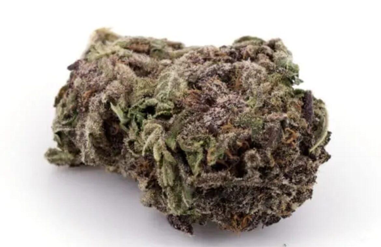 Purple Urkle strain photo 1
