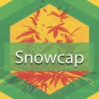 Snowcap Logo