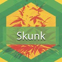 Skunk (Skunk No. 1, Skunk) Logo