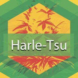Harle-Tsu (Harlequin Tsunami), AskGrowers