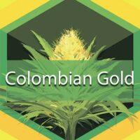 Colombian Gold (Santa Marta Colombian Gold, Santa Marta) Logo