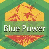 Blue Power Logo