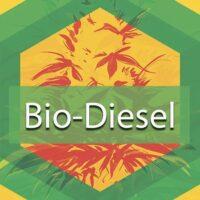 Bio Diesel Logo