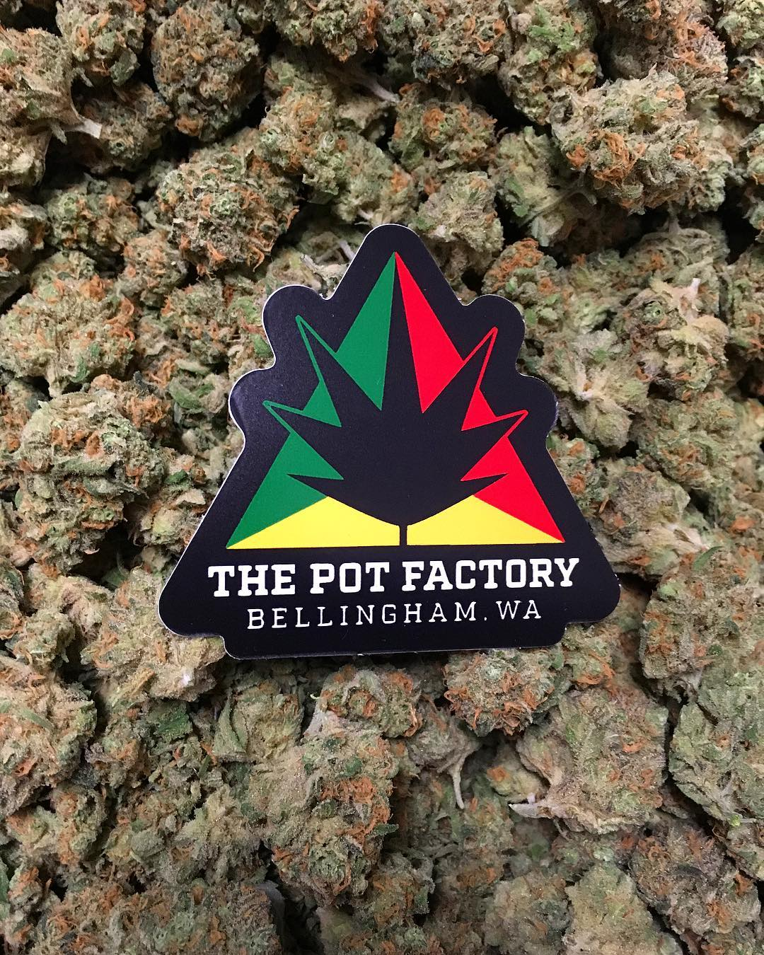 The Pot Factory brand photo 2