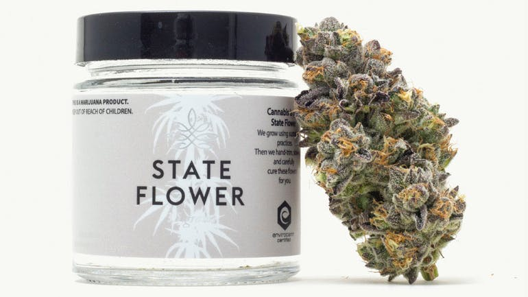 state-flower photo 4