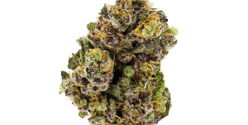 blueberry diesel strain photo 1