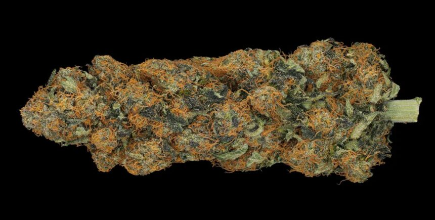 OG Bubba strain photo 3