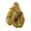 Gorilla Grape strain photo 1