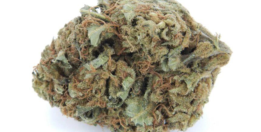OG Bubba strain photo 1
