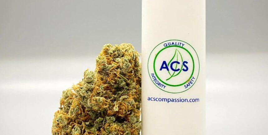 Alternative Compassion Services brand photo 2