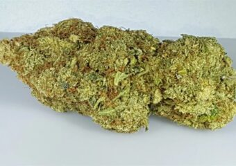 Island Sweet Skunk (ISS) strain photo 2