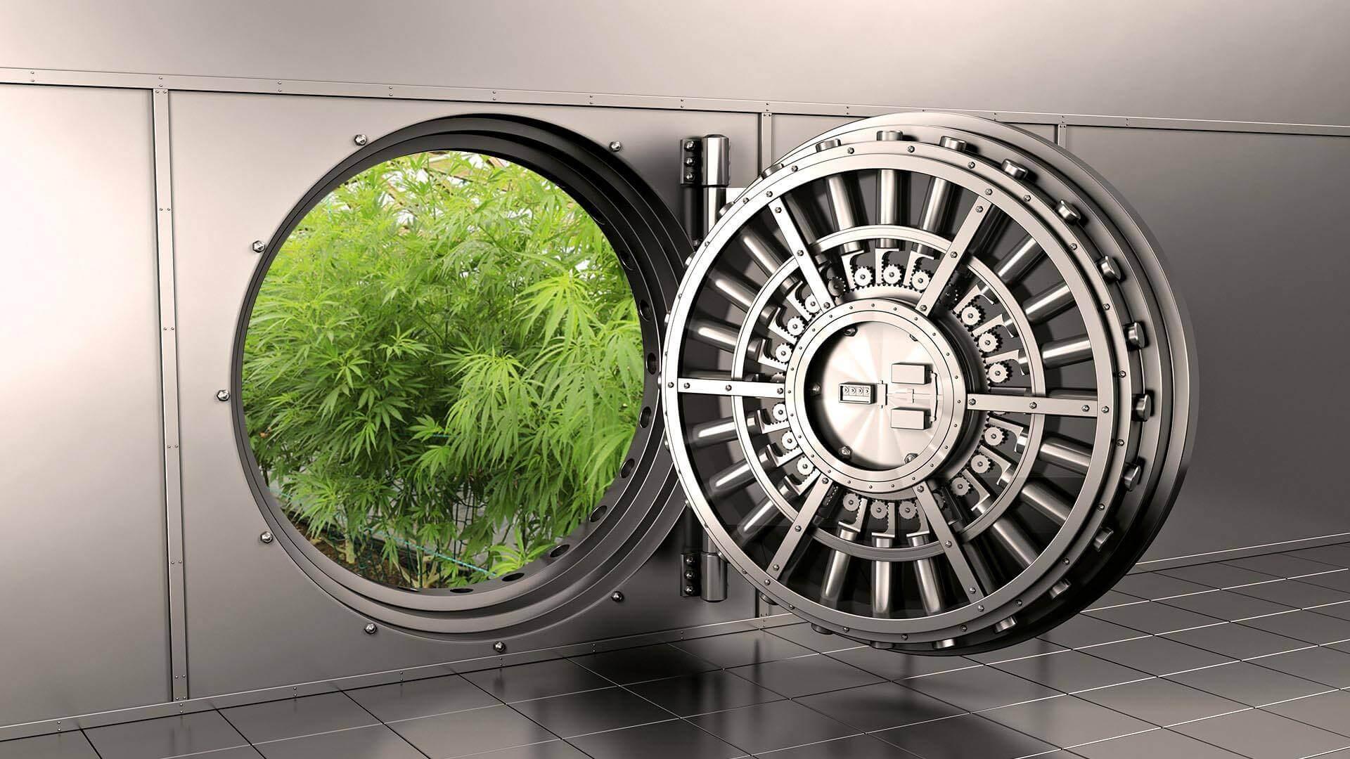Cannabis cash transport