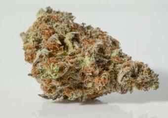 Herijuana (Herojuana) strain photo 1