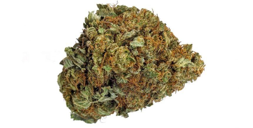 Snow White strain weed