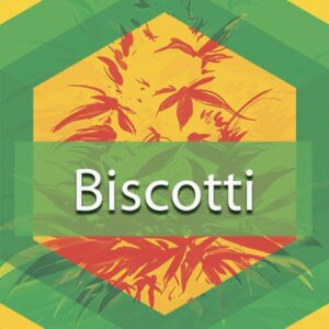 Biscotti, AskGrowers