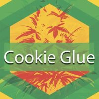 Cookie Glue Logo