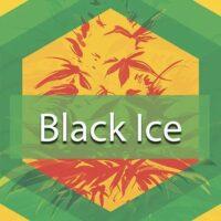 Black Ice Logo