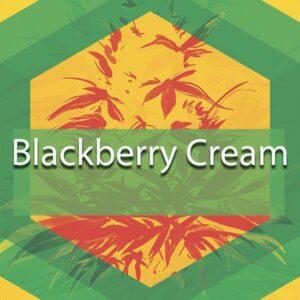 Blackberry Cream, AskGrowers