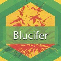 Blucifer Logo