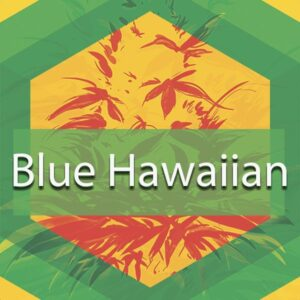 Blue Hawaiian, AskGrowers
