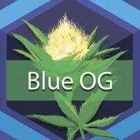 Blue OG Logo