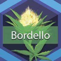 Bordello Logo