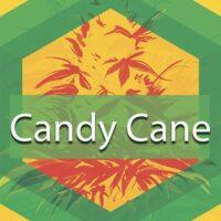 Candy Cane Logo