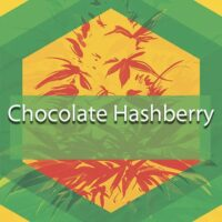 Chocolate Hashberry Logo