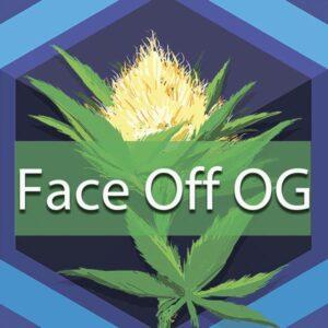 Face Off OG, AskGrowers