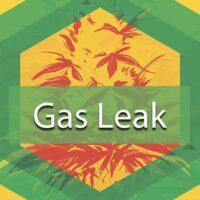 Gas Leak Logo