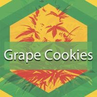 Grape Cookies Logo