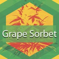 Grape Sorbet Logo