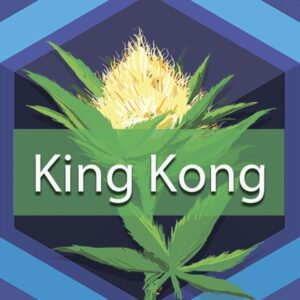 King Kong, AskGrowers